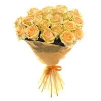 Букет 25 роз кремовых