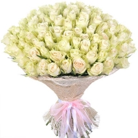 75 белых роз (40 см)