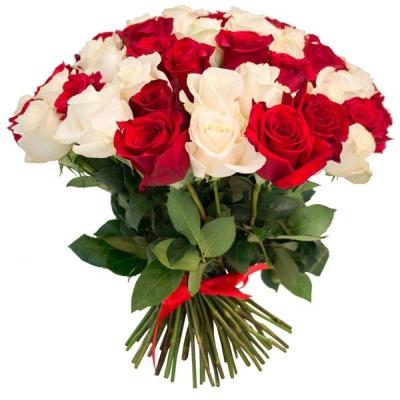 75 роз красных и белых (60 см)