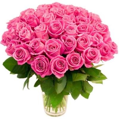 75 розовых роз (50 см)