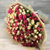 Букет из 101 белой и розовой кустовой розы