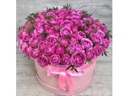 Розовая коробка из 101 пионовидной розы