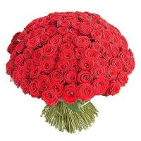 Букет 101 красная роза (40см)