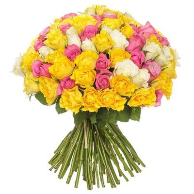 101 роза желто-бело-розовая (50 см)
