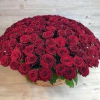 Корзина из 151 красных роз