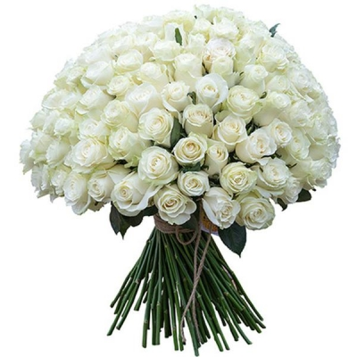 151 белая роза (50 см)