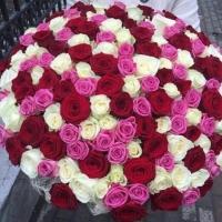 Букет из микс 151 розы
