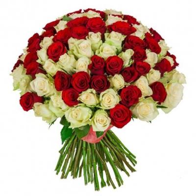 151 роза красно-белая (40 см)