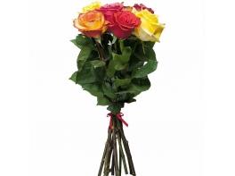 Букет из 5 разноцветных роз
