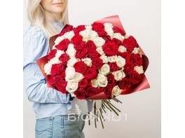 71 красная и белая роза