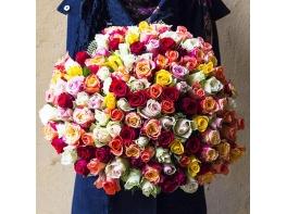Букет 201 роза разноцветная (40 см)