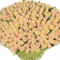 Букет 201 кремовая роза