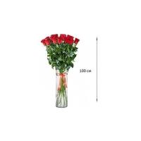 Высокие розы 100 см 25 шт