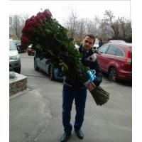 Высокие розы 150 см 51 шт