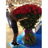 Высокие розы 200 см 101 шт