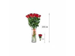 Высокие розы 150 см 25 шт