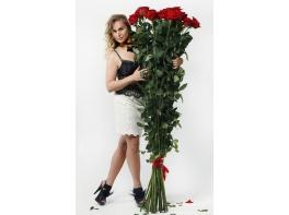 Высокие розы 180 см 51 шт