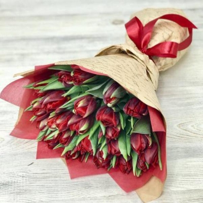 Букет из 25 бордовых пионовидных тюльпанов