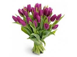 Букет из 25 сиреневых тюльпанов №2
