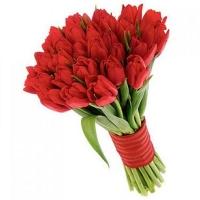 Букет из 25 красных тюльпанов №4