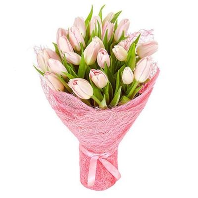 Букет из 25 розовых тюльпанов №2