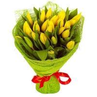 Букет из 25 желтых тюльпанов №2