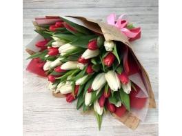 Букет из 51 красного и белого тюльпана №4