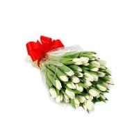 Букет из 51 белого тюльпана