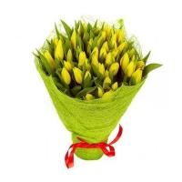 """Букет из 51 желтого тюльпана """"Марсианин"""""""