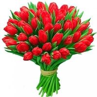 Букет из 51 красного тюльпана