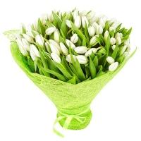 Букет из 101 белого тюльпана №10