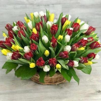 Корзина из 101 разноцветного тюльпана