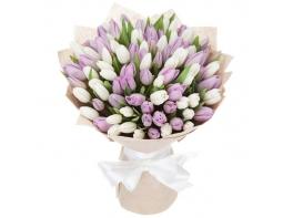 Букет из сиреневых и белых тюльпанов 101 шт.