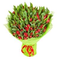 Букет из 101 красного тюльпана №33