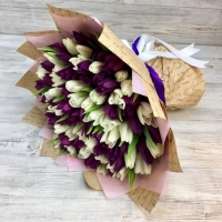 Букет из 101 сиреневого и белого тюльпана №2
