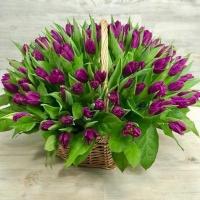 Корзина из 101 сиреневого тюльпана