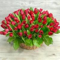Корзина из 101 красного тюльпана №4