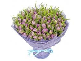 Букет из 101 сиреневого пионовидного тюльпана