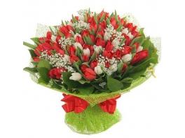 Букет из красных и белых тюльпанов 101 шт