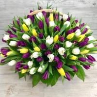 Корзина из 151 разноцветного тюльпана