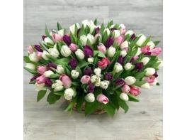 Корзина из 151 разноцветного тюльпана №2