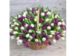 Корзина из 201 разноцветного тюльпана №2