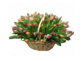 Корзина из 301 разноцветного тюльпана