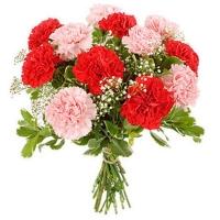 Букет красных и розовых гвоздик