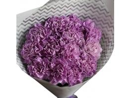 Букет фиолетовых гвоздик