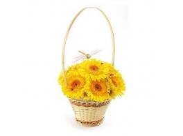 Желтая гербера в корзине «Просто так»