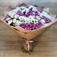 Букет из 15 белых и розовых кустовых хризантем
