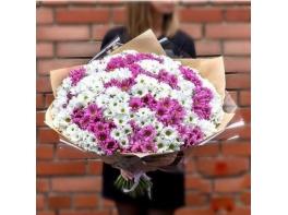 Букет из 35 кустовых хризантем МИКС