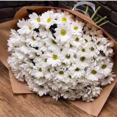 Букет из 15 белых кустовых хризантем