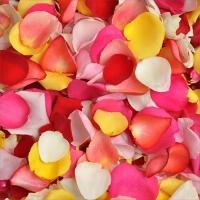 Лепестки роз (пакет)